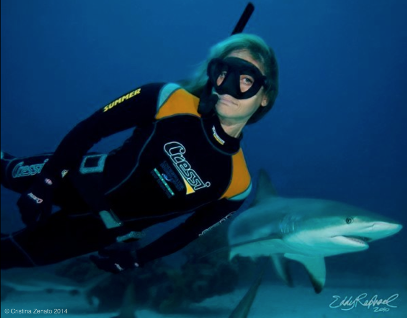39027.-freediving-with-shark-big-file