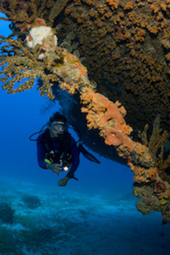 Scuba diver Cristina Zenato on Theo's Wreck, Freeport, Grand Bahama